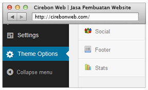 code framework theme options